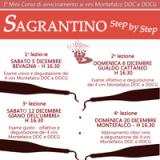 Sagrantino Step By Step