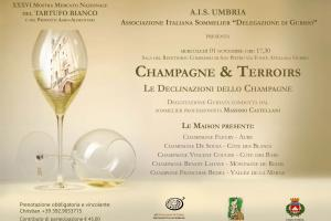 Champagne & Terroirs